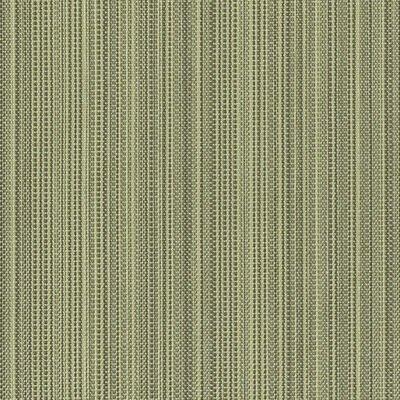 Tempotest Colore Zena 314