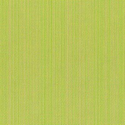 Tempotest Colore Zena 333