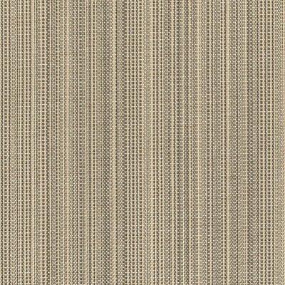 Tempotest Colore Zena 355