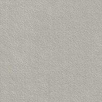 Dinamica 9118 pearl grey