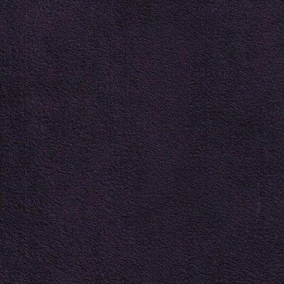 Dinamica 9248 eggplant