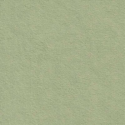 Dinamica 9048 fern green