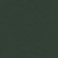Roma 7796 - grünspan