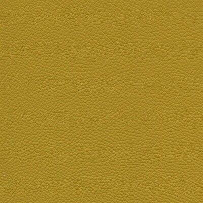 Roma 8647 - gelb