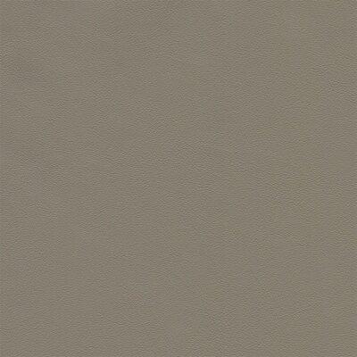 Siena 1416 - kiesel