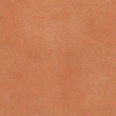 Utah - Büffelleder 2810 - cognac