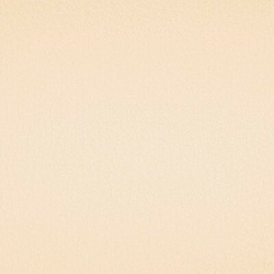 Kunstleder Marina 209 x 4780