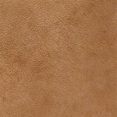 sand 8494