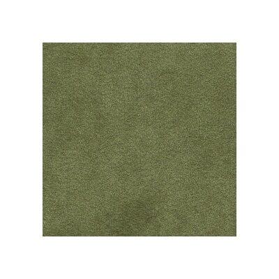 5700 Fern Green