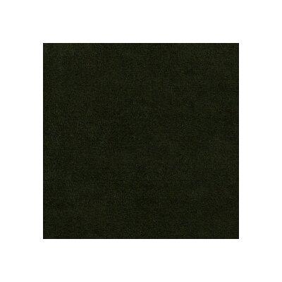 6407 Kiwi