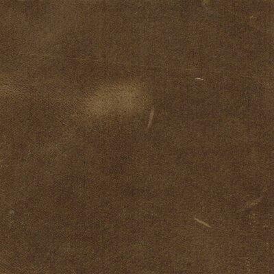 7254 - fango