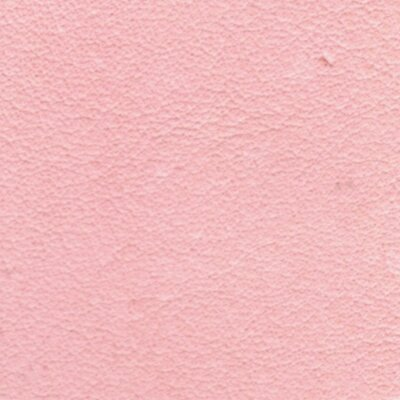 323 - baby rosa