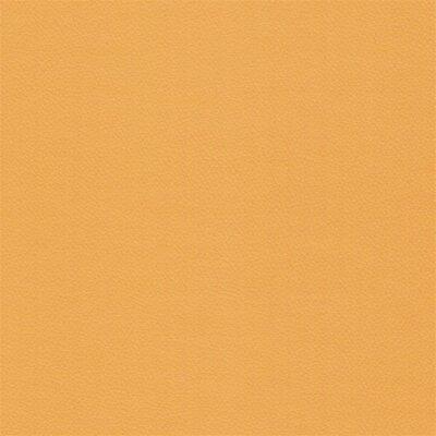 97060 amber