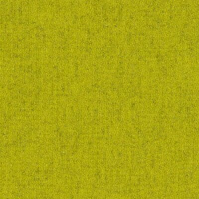 24 kiwi