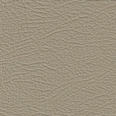 3444H - champignon