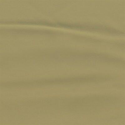 3477 - champignon