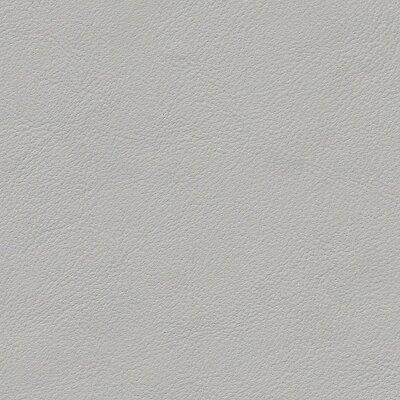 1668 - sternsilber