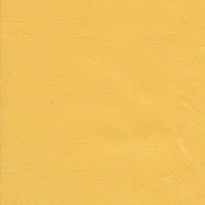 8647 - yellow