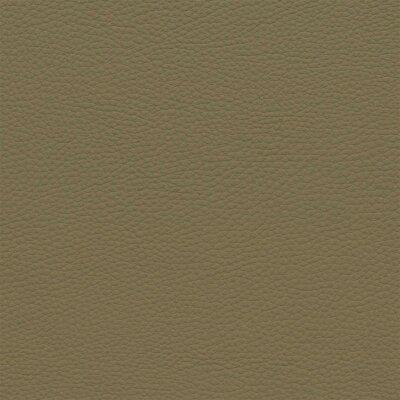 3088D - camel