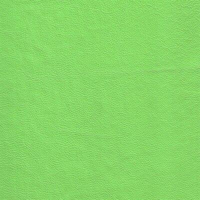 Kawasaki grün