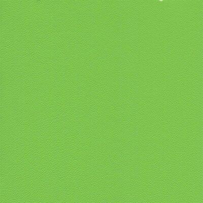 7791 - kawasakigrün
