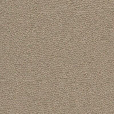3713 - ivory