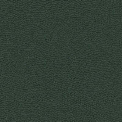 7796 - grünspan