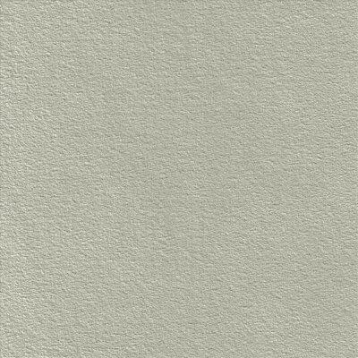 2901 champignon