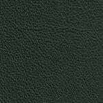 2450 - dunkelgrün