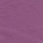 4100 - violett